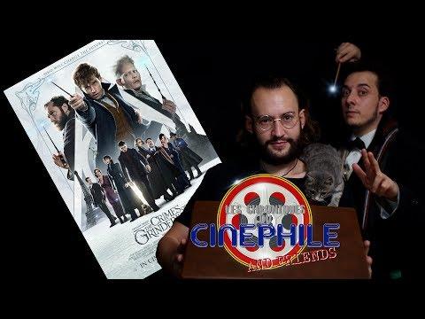 Les chroniques du cinéphile - Les Animaux FantastiquesLes crimes de Grindelwald feat Hugo Joubert