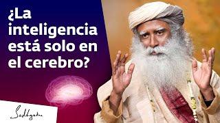 ¿En qué parte del cuerpo está la mente? | Sadhguru