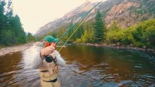 INSANE FLY FISHING IN COLORADO