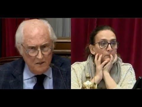 La pregunta de Pino Solanas que descolocó a Michetti en el Senado