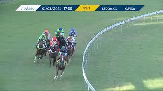Vidéo de la course PMU PREMIO DANILO PRINCIPE