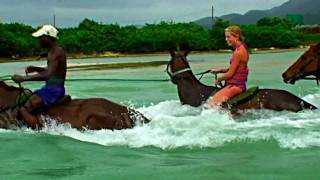 swimming with horses in Jamaica and Okanagan Lake -  True Reflectiion