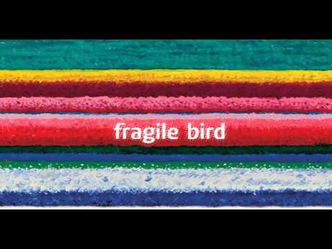 City And Colour - Fragile Bird