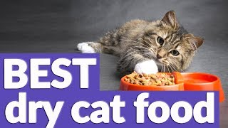 Best Dry Cat Food in 2019 | 9 TOP RATED Dry Cat Foods