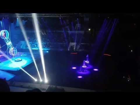 Цирк Система2, Братьев Запашных