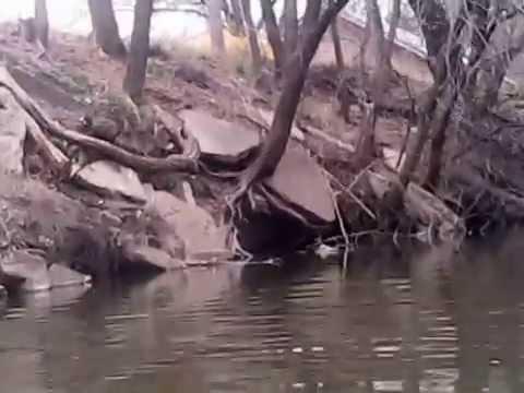 Canoeing around the Little Arkansas.