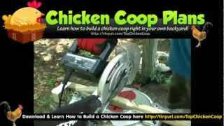 Chicken Coop For 20 Chickens - Free Small Chicken Coop Plans
