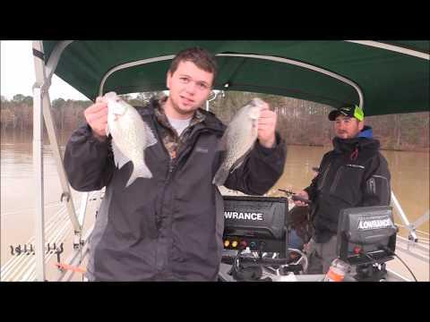 Crappie Fishing On Lake Oconee