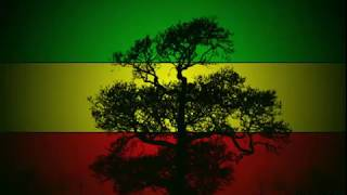 Reggae Roots en Español Mix Vol.11- Rastafaba CR.