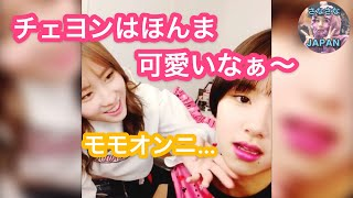 【 TWICE日本語字幕】チェヨン大好きももりんww