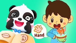 Baby Panda Learns Body Parts   Children Play The Functions Of The Body Parts   Fun Puzzles Games