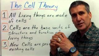 The cell theory and Prokaryotic vs. Eukaryotic cells