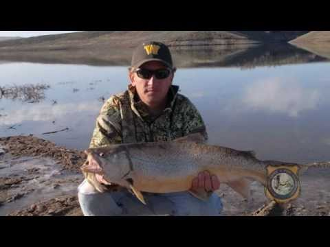 Fishing Records Fall In Wyoming