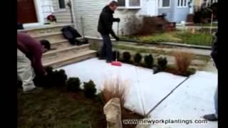 New York Plantings Garden Designers' Front Yard Renovation In Queens, New York