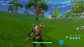 Fortnite Battle Royale bug - Textures not loading, can't loot