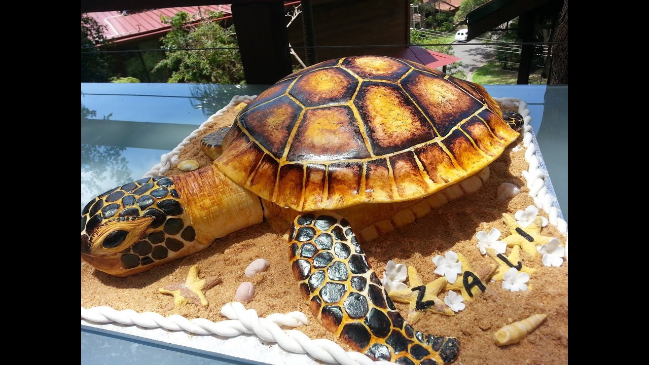Tortuga Turtle Cake YouTube