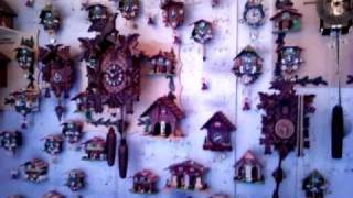 1001 Cuckoo Clocks Video