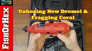 Unboxing New Dremel & Fragging Coral