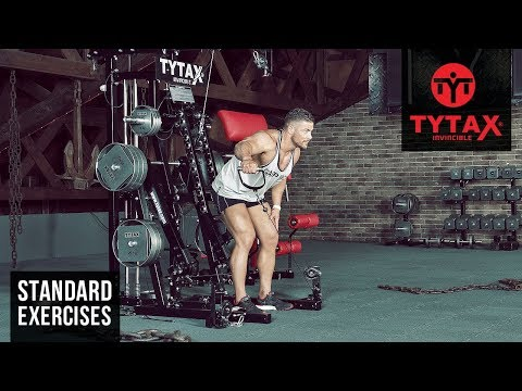 Bent-Over Low Pulley Side Lateral Raise   TYTAX® M2