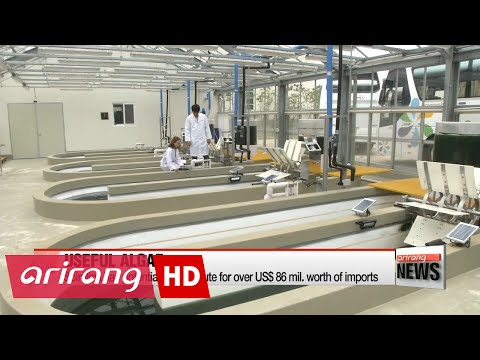 Researchers in Korea develop technology to mass produce spirulina