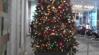 丸の内トラストタワーN館 1Fロビーのクリスマスツリー