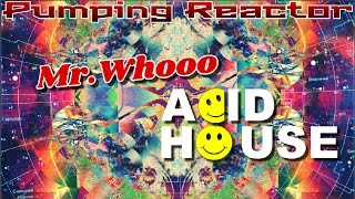 Mr.Whooo - Acid House (Original mix)