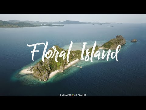 Floral Island: Your Dream Vacation on Your Own Private Island Paradise in Palawan?!