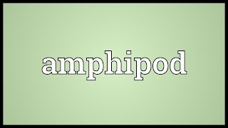 Amphipod Meaning