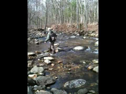 Fly fishing on the hughes river shenandoah national park for Shenandoah national park fishing
