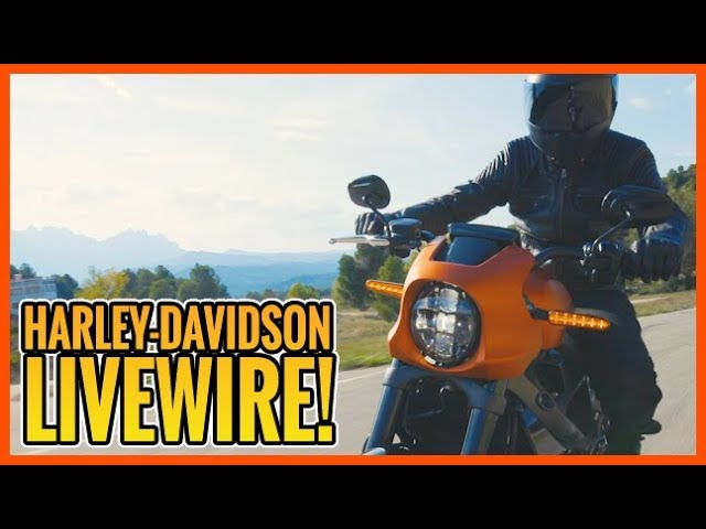 Born To Ride Episode 1195 - H-D Factory - H-D Livewire - The Roads of Florida