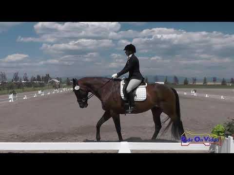 116D Barbara Flynn on P K  Cooper Intermediate Dressage Rebecca Farm July 2017
