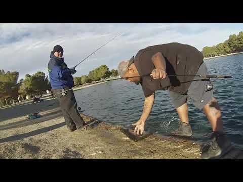 Apollo Park Fishing 123