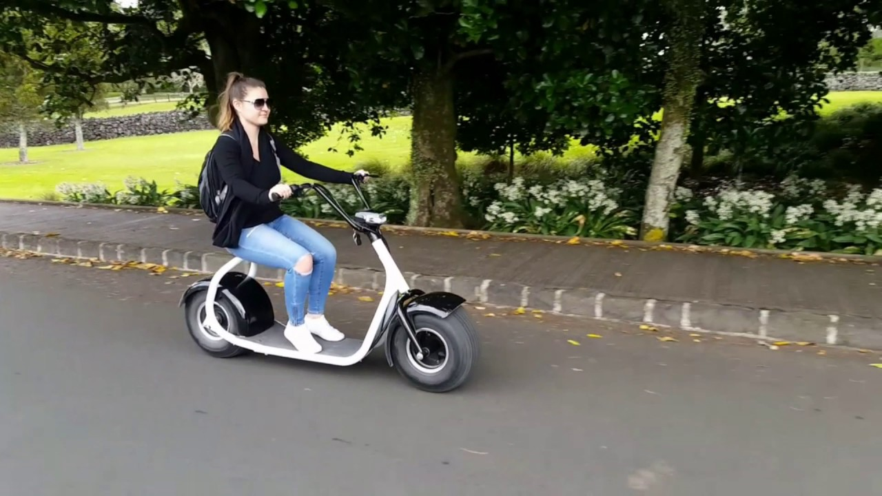 Storm Electric Cruiser Stormrides Nz Electric Scooter