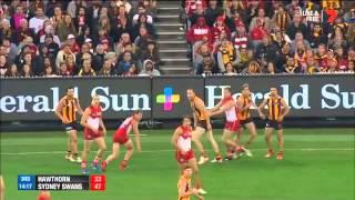 AFL 2015  Round 8:Hawthorn v Sydney Replay