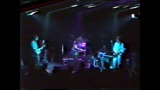 MoTucker & Half Japanese Live Paard. Den Haag. Nederland 1989 (The Hague, The Netherlands)