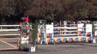 《第65回全日本障害馬術大会2013 Part  I》 佐藤 泰選手