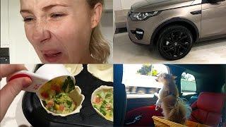 WEEKLY VLOG: Whaaat Did I Just Eat?!   Lauren Curtis