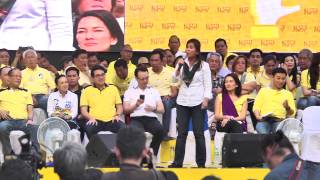 Loren Legarda - Team PNoy proclamation rally
