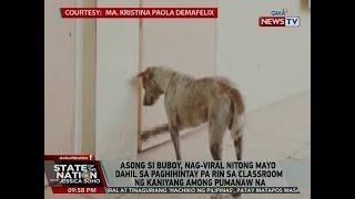 SONA: Asong si Buboy, nag-viral nitong Mayo dahil sa paghihintay pa rin sa classroom ng ...