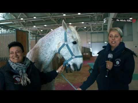 L'amore sotto il segno del cavallo