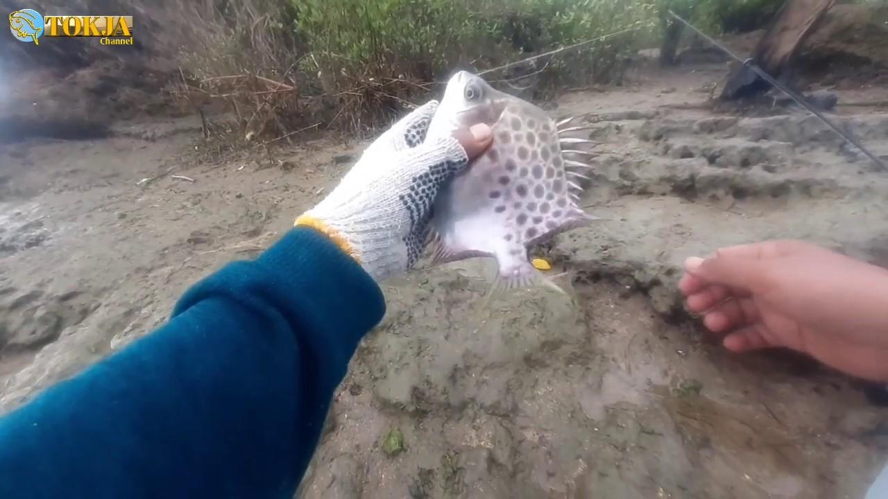 Spot Mancing di Pantai Sayang Heulang Garut Selatan - YouTube