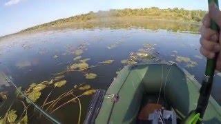 Рыбалка/ На Южном Буге Николаевской обл/Оригинальные рецепты