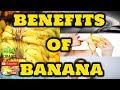 🍌🍌🍌 Benefits of Banana   Nutrition Facts and Health Benefits of Banana   Tech Niloy