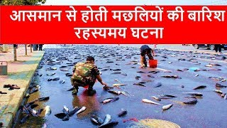 Video Fish Rain from the Sky || What is The reason Behind fish rain download MP3, 3GP, MP4, WEBM, AVI, FLV Januari 2018