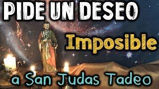San Judas Tadeo Competitors List
