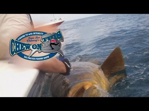 Monster Fish - Monster Fishing - Monster Fish Video - Monster Fishing Video - Goliath Grouper