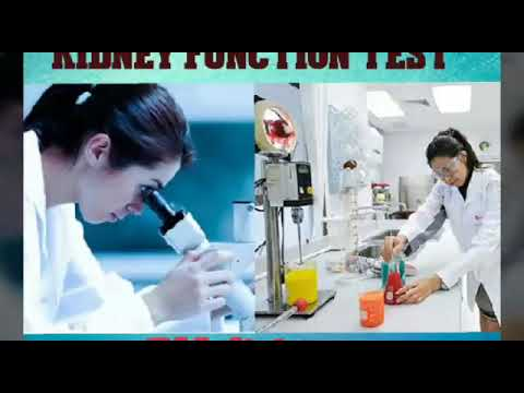 KIDNEY FUNCTION TEST (KFT) HINDI| BY.JISHAN