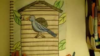 Draw Along Birdhouse Drawing
