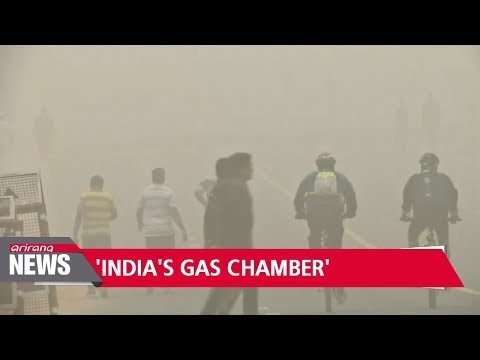 New Delhi 'a gas chamber'… schools close as pollution chokes India's capital