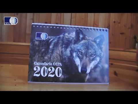 calendario-e-agenda-oipa-2020